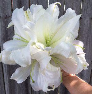 Tmx 1467140786351 White Lilly Clutch Rockwall, Texas wedding florist