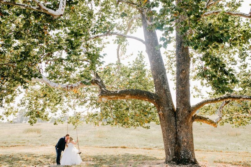 Pretty tree | Prairie to Pacific Photography