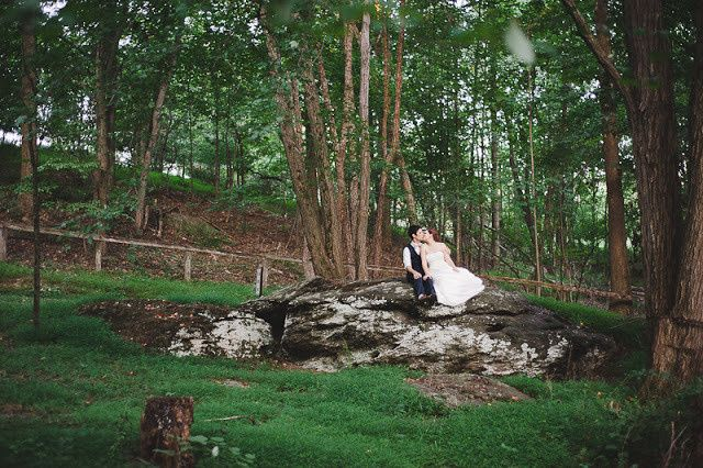 Newlyweds sitting by the trees
