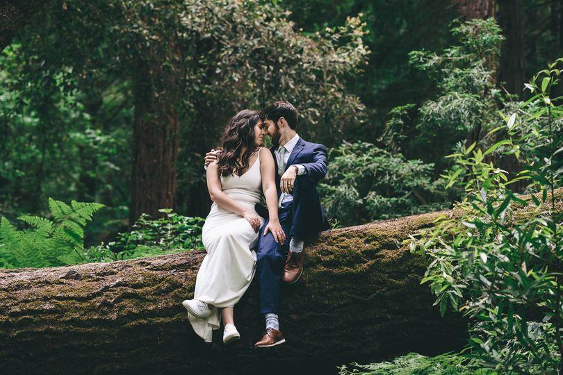 Redwood-Big-Sur-Wedding-Photog