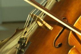 Stringmuse