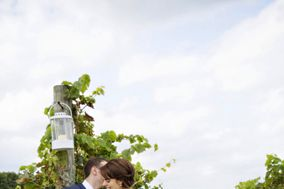 Priam Vineyards