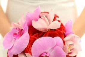 Triplicity Flowers