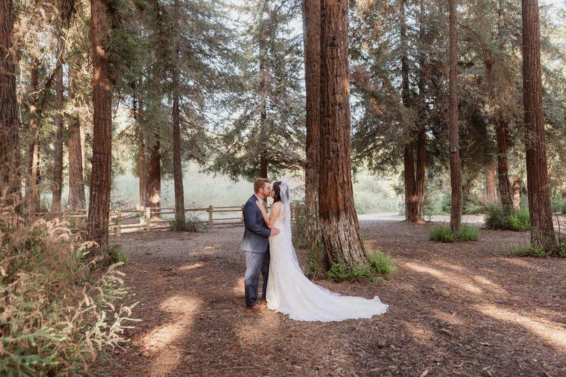 Redwood Elopement