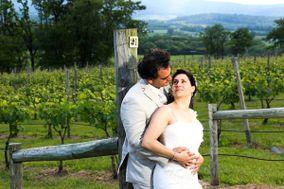 Hillsborough Vineyards