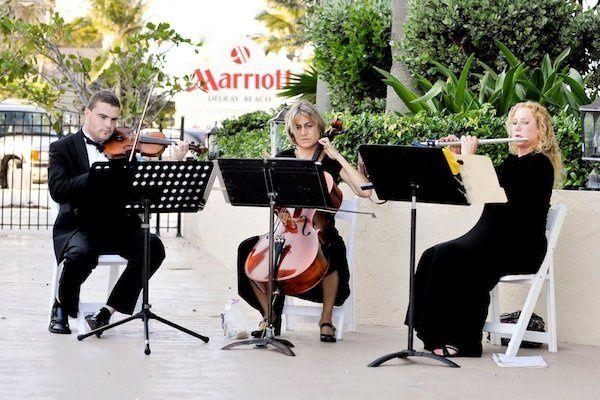 Violin/Cello/Flute Trio