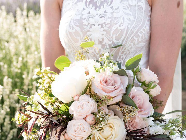 Tmx Ashley 264 51 1979067 159849560973584 Napa, CA wedding photography