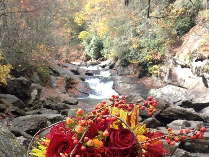 Tmx 1383148386940 627006368529097009581194460575 Asheville, North Carolina wedding florist