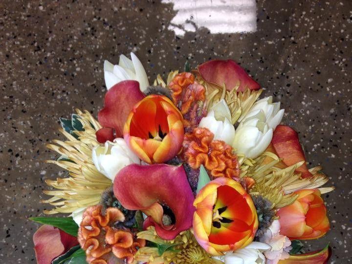 Tmx 1401561323661 5219546246720475857111953896130n Asheville, North Carolina wedding florist
