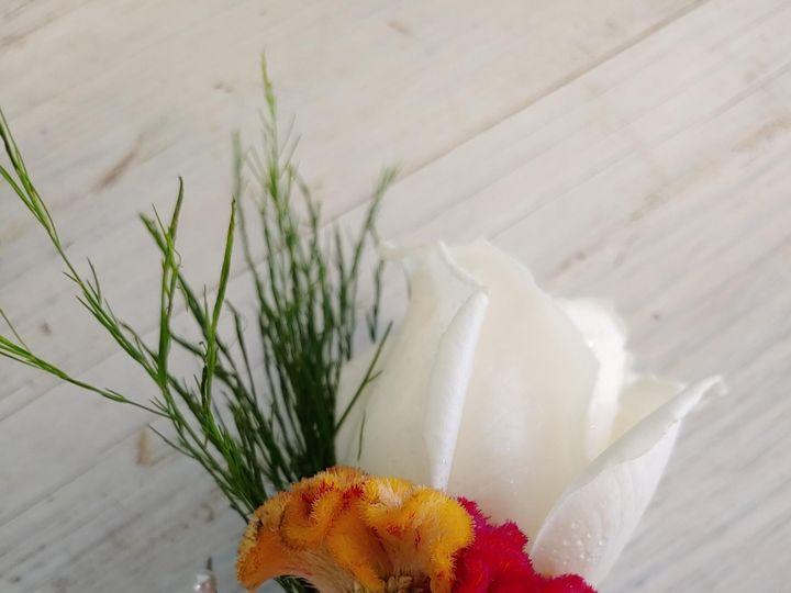 Tmx 0624201144a 51 1110267 159370881229365 Ocala, FL wedding florist