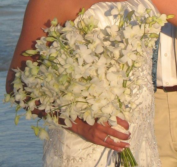 Tiffany & Brian Feb 8, 2008