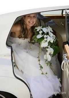 Tmx 1206138084746 FDH 340x340 08 Santa Rosa wedding florist