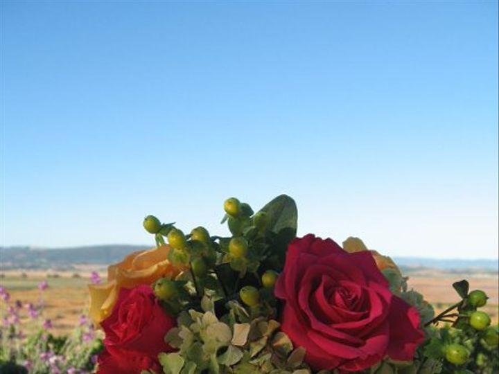 Tmx 1239470869101 IMG3358 Santa Rosa wedding florist