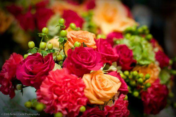 Tmx 1239471376648 20080809bluffwedding0137 Santa Rosa wedding florist
