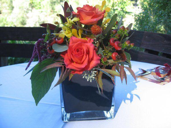 Tmx 1239478234648 IMG3613 Santa Rosa wedding florist