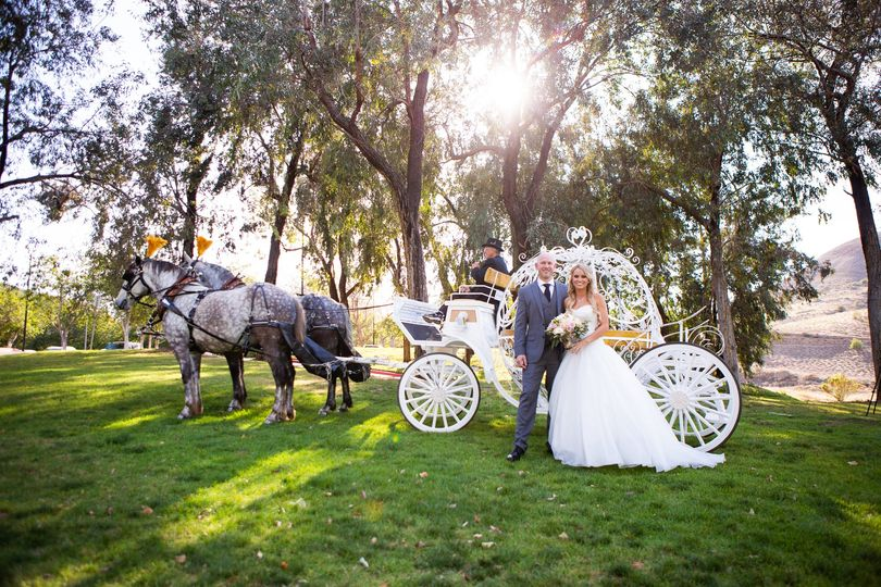 horse and carriage 3 51 1367 v1
