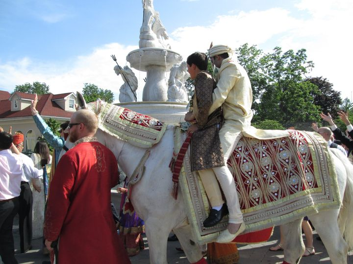 Tmx 1372090037146 Surf Club Baraat Horse 3 Jackson, NJ wedding transportation