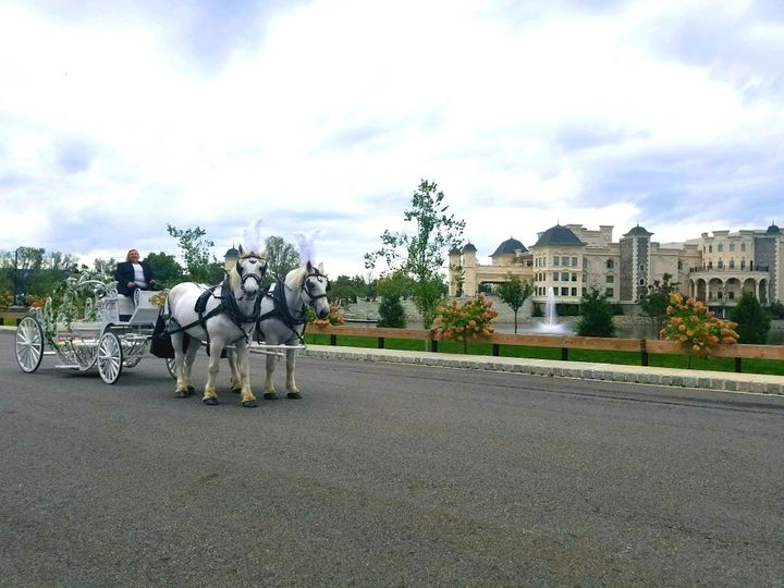 Tmx Legacy Castle Cinderella Carriage 2 Horses 1 51 301367 Jackson, NJ wedding transportation