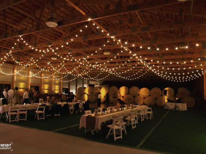 Tmx Njnypaeventlightingrentalrentalsbistrostringlightsweddingdecoreggsoticevents 51 152367 V1 Hampton wedding eventproduction