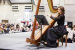 Lauren C. Sharkey, Harpist image