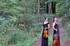 Kessler Strings