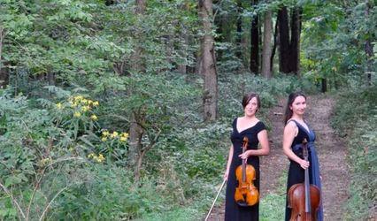 Kessler Strings 1