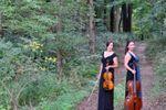 Kessler Strings image