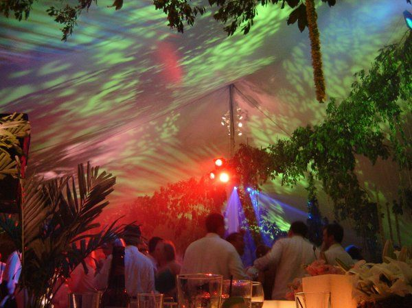 Native cut foliage and exotic imports formed a forested ceiling for this destination wedding on an...