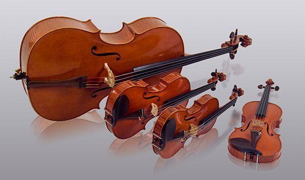 Lots of violins
