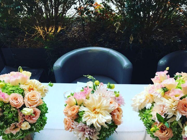 Tmx 1509136210791 Img1570 Brooklyn wedding florist