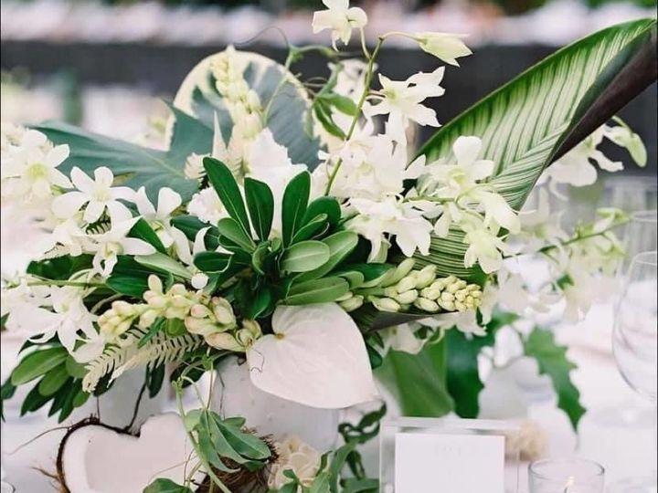 Tmx Img 2506 51 1967667 159191406681121 Orlando, FL wedding planner