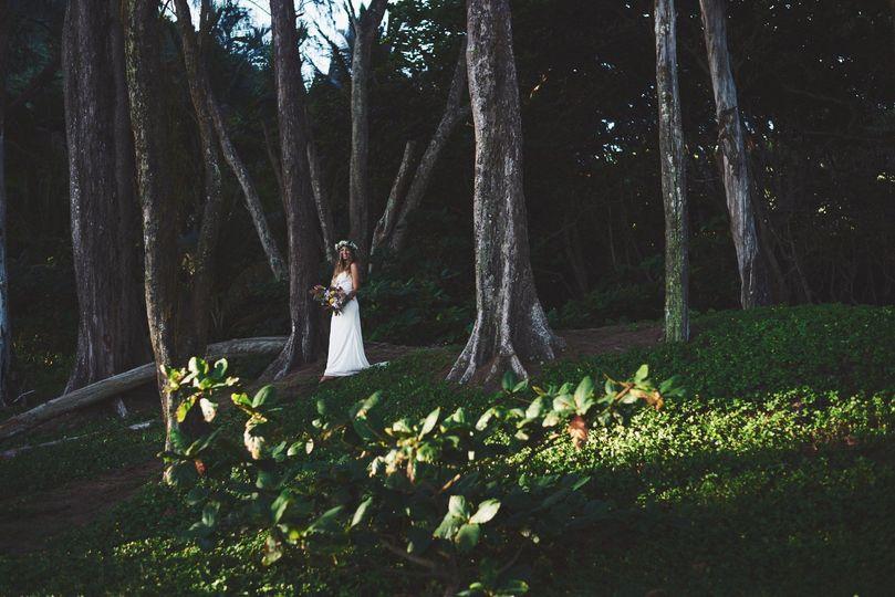 Big Island Magic: A Love Story