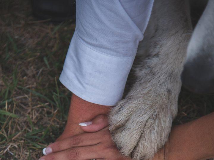 Tmx 1474686381537 Bg 102 Billings, MT wedding photography