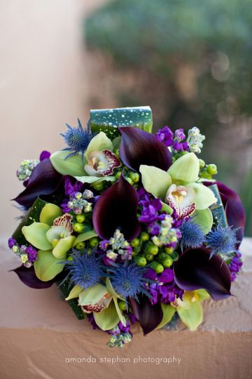 Wild Iris Weddings