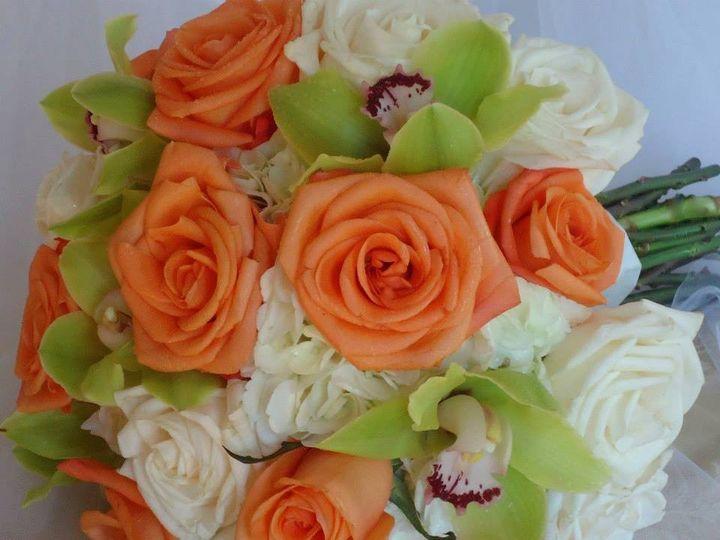 Tmx 1370271324800 Cymbidium East Aurora, New York wedding florist