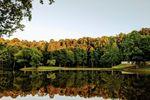 Spinning Leaf at North Lake image