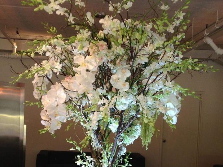Tmx 1515681650 2c108377b6ed49b7 1515681649 Eca18d79dd0eba4b 1515681622403 44 Orchid Tree Entra Franklin Lakes, NJ wedding florist
