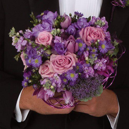 purpleboq