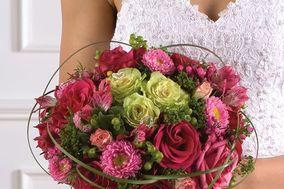 Bloomcity Florist