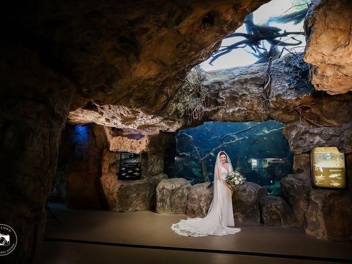 Tmx Aquarium 1 51 609867 158491089963182 Tampa, FL wedding planner