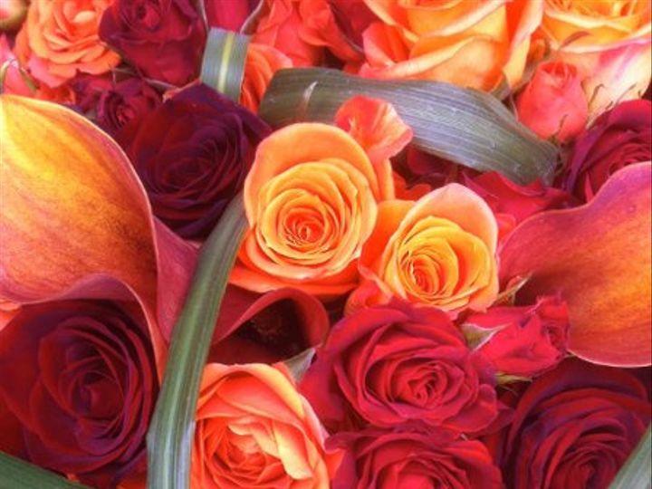 Tmx 1298993788214 IMG0457 Stone Harbor wedding florist