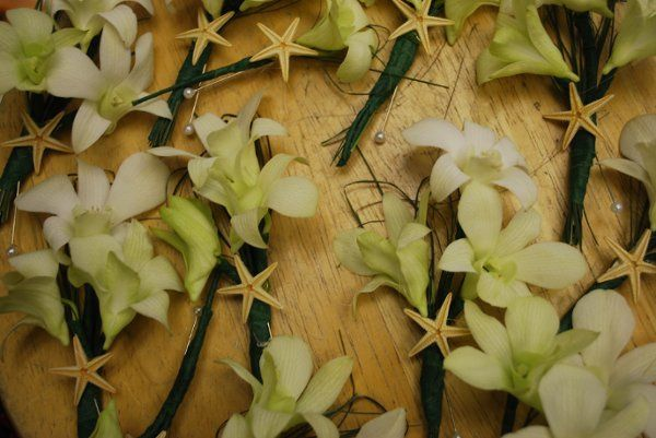 Tmx 1298994737479 DSC0141 Stone Harbor wedding florist
