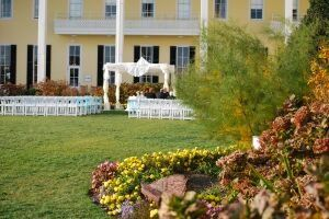 Tmx 1299008180948 CONGR120 Stone Harbor wedding florist