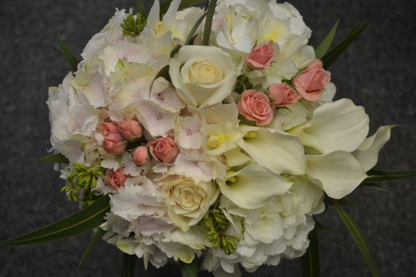 Tmx 1306161888985 DSC0002 Stone Harbor wedding florist