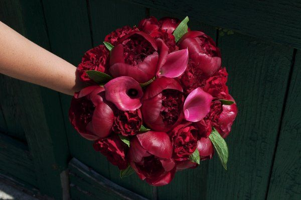 Tmx 1306161961094 DSC0847 Stone Harbor wedding florist