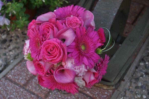 Tmx 1306162387623 DSC0867 Stone Harbor wedding florist