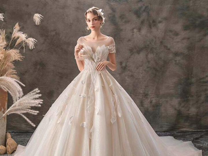 Tmx B6a8a5b1 55b7 413c Ae36 B8dbb3334fe0 51 1869967 157703560554306 Rio Vista, CA wedding dress