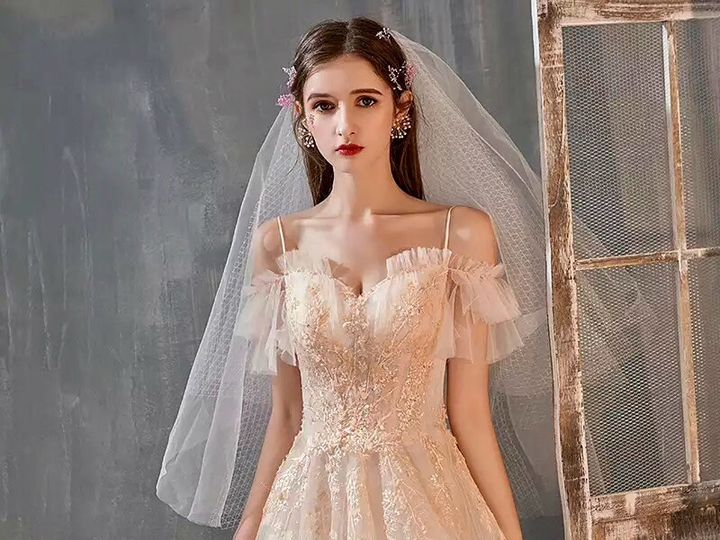 Tmx B87335c4 E912 45db 90c3 F2835a8762c6 51 1869967 157703569178783 Rio Vista, CA wedding dress