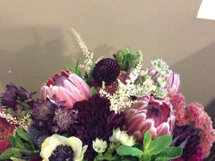 Tmx 1517341833 E3c910f5c093a845 1517341831 4c47f9f9ba7a38df 1517341832733 22 Photo Sep 29  5 3 Gambrills, MD wedding florist