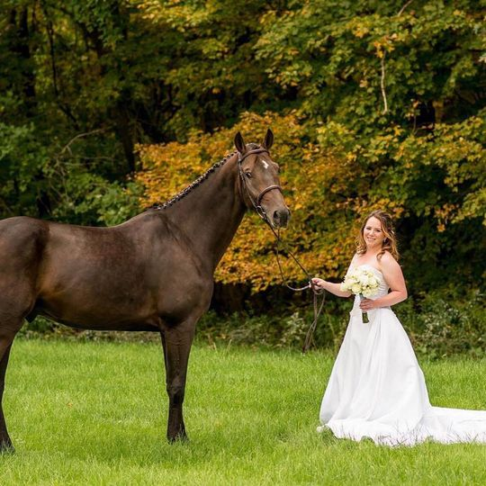 Bride on the farm